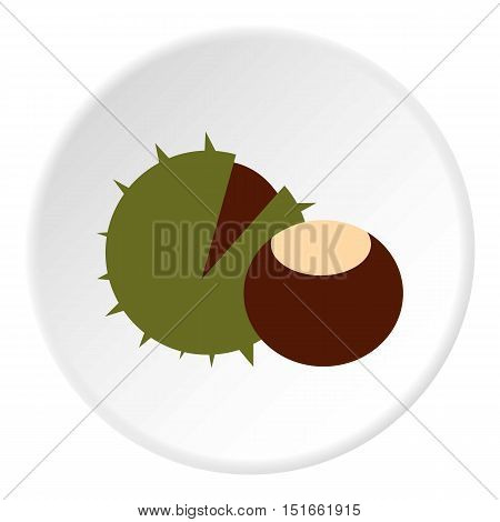 Chestnut icon. Flat illustration of chestnut vector icon for web