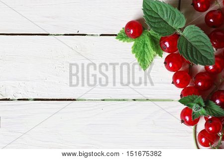 red currant berry on white wooden background