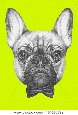 Hand drawn portrait of French Bulldog with glasses and bow tie.