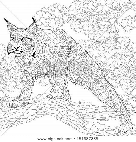 Stylized hunting wildcat (lynx american bobcat caracal) ready to attack. Freehand sketch for adult anti stress coloring book page with doodle and zentangle elements.