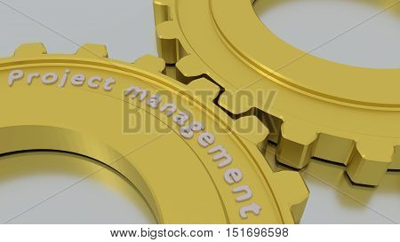 Two connected gears in gold on a silver floor with the word project management engraved 3D illustration