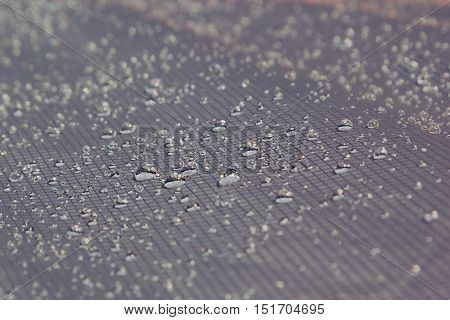 Water drops on a light warm gray background. Abstract background.