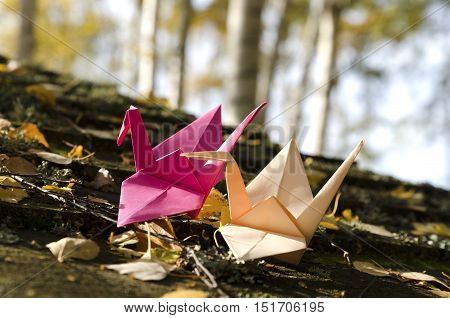 Two origami cranes in the Nature. Selective focus