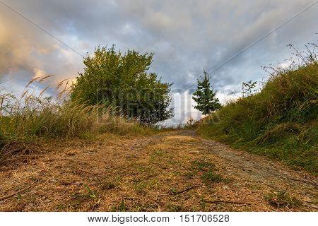 Dirt road and dense clouds illuminated. Moravian landscape Svitavka.