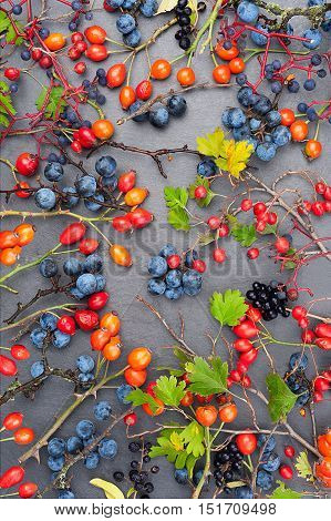 Background with wild berries on a slate board