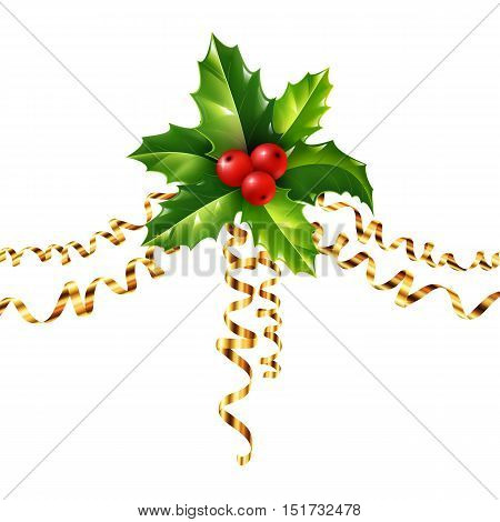 Vector holly Christmas symbol with golden serpentine isolated on white background
