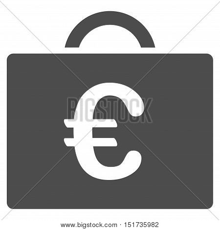 Euro Bookkeeping Case icon. Vector style is flat iconic symbol, gray color, white background.