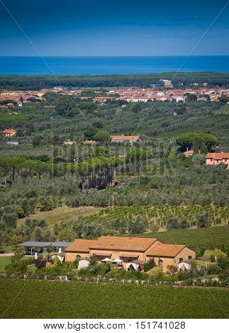 Donoratico, Castagneto Carducci, Livorno - Tuscany