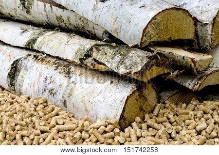 Alternative biofuel from birch sawdust. Wood pellets in the soil. Biofuels. Granules on the background of birch firewood.