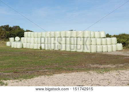Stacked hay bales wrapped in green plastic as a winter inventory