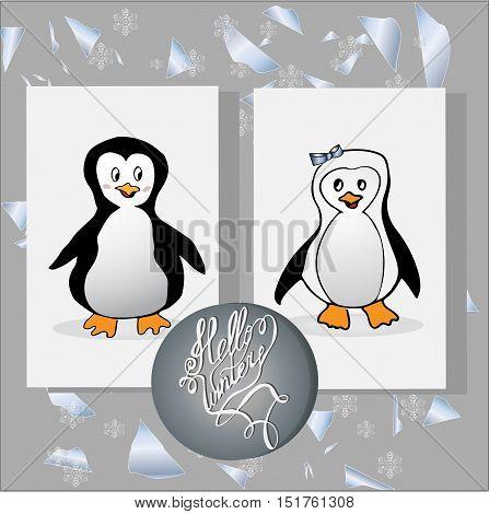 Set of animal penguin. Penguin bird penguin vector animals winter penguin isolated animal penguin cartoon penguin character illustration