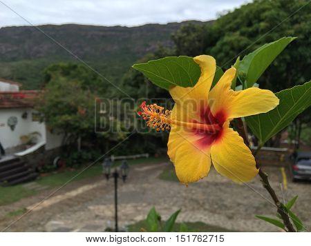 Foto realizada em Tiradentes, Minas Gerais. Ao fundo temos as famosas montanhas de Minas.