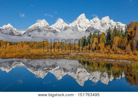 a reflection of the snow capped teton range in fall