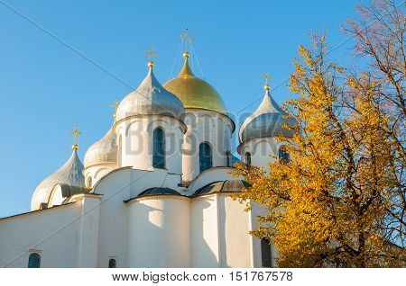 Architecture landscape-closeup of Saint Sophia Cathedral domes in Veliky Novgorod Russia.The oldest Orthodox church building in Russia closeup architecture view framed by autumn trees at sunset