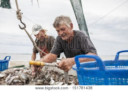 BEAUFORT, SOUTH CAROLINA-OCTOBER 16, 2015: Unidentified workers haul nets and sort shrimp on a fishing vessel off the coast of Beaufort, South Carolina