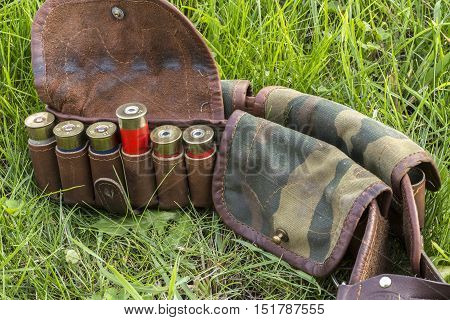Bandolier with cartridges on a green grass.