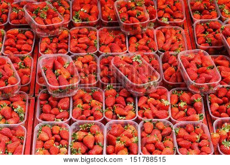 A full framed background with boxes filled with strawberries for sale at the farmers market.