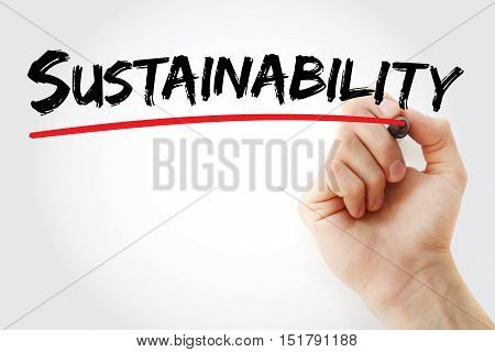 Hand Writing Sustainability With Marker