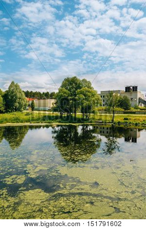 Lake in the countryside with duckweed in water and old mill in the background. Nobody