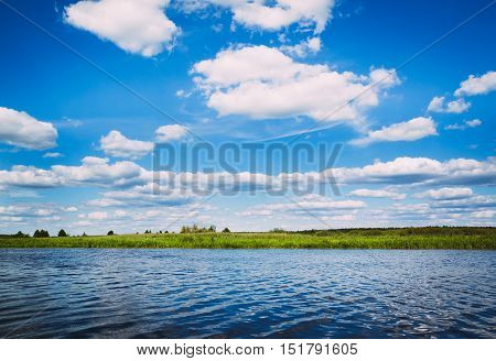 River Landscape with blue cloudy sky and reeds growing on the banks