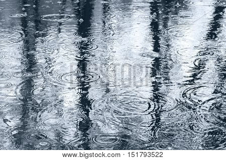 Raindrops And Reflection Of Trees In Puddle On Sidewalk