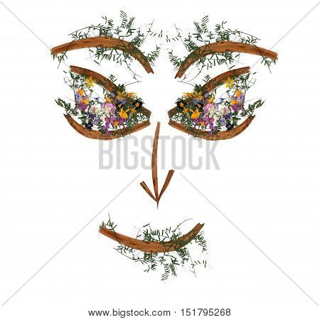 Application, Face Of Dried Pressing Bright Flowers