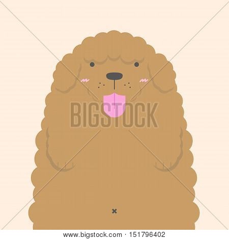 cute big fat white Poodle dog on nude color background