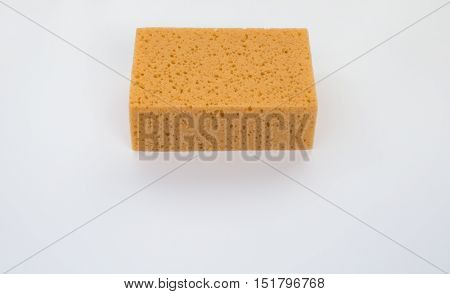 Close up of a sponge, detail, background, space for text