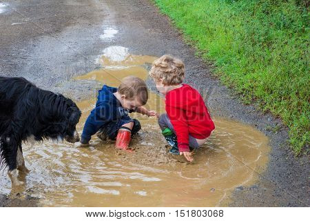 Two little boys playing in mud puddle with dog