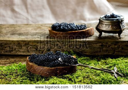 Sandwich with black caviar. The dark bread. Russian food. The old Board and moss. Silverware.