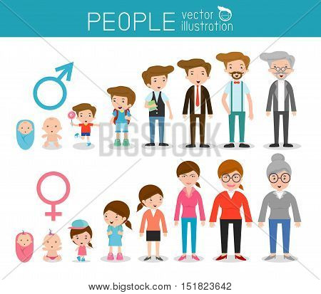 Generation of man and woman from infants to juniors. all age categories. isolated on white background, generation of men and women  from infants to seniors, Stages of development, design illustration.