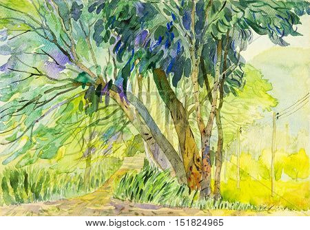 Watercolor landscape original painting colorful of tree and emotion in mountain background