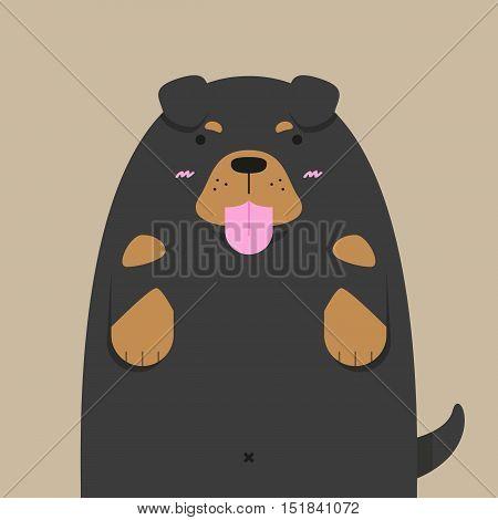 cute big fat Rottweiler dog on light brown background