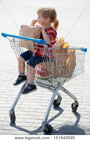 Cute Boy In Shopping Trolley