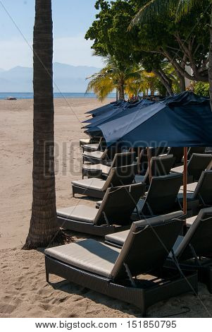 rows of emty lounge chairs on a deserted beach