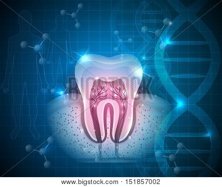 Healthy Tooth With Roots Scientific Modern Design On A Blue Dna Background
