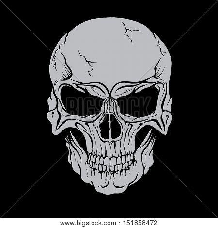 Vector skull head. Print design. Vector illustration