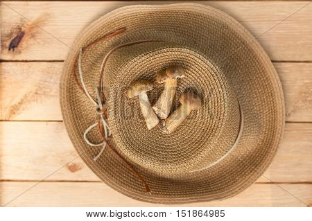 Three Edible Mushroom Leccinum Scabrum On Wooden Table. Musroom And Wicker Hat On Wooden Table. Composition Of Mushroom And Wicker Hat. Top View.