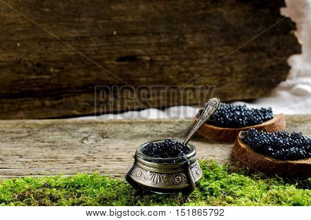 Black caviar. Silver utensils. Two sandwiches with black bread and caviar. Russian food. Vintage style. The old Board and moss. Place for text.