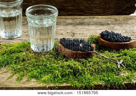 Two sandwiches with black caviar. Two faceted glass with vodka. Spirits. The old Board and moss. Russian food.