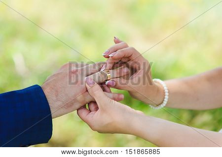 Bride's hand putting a wedding ring on the groom's finger. Meadow, grass in the background, a light green background.