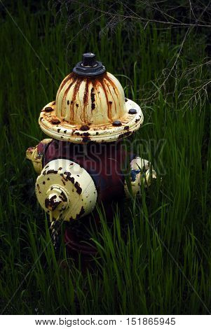 Old Rusty fire hydrant buried in grass