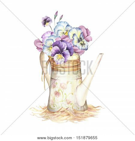 Watering can with pansies. Hand draw watercolor illustration