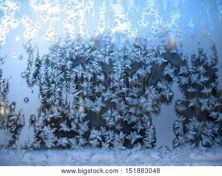 Frozen Winter Window
