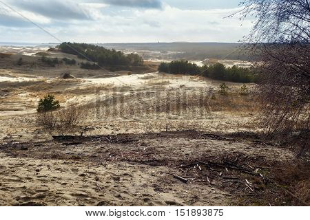 Sand dunes of the russian part Curonian Spit in february. It is a 98 km long curved sand-dune spit that separates the Curonian Lagoon from the Baltic Sea coast. It is a UNESCO World Heritage Site.
