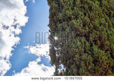 Sky backlight in Alcala de Henares, Spain