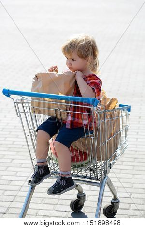 Cute baby boy blond child in plaid shirt sits in shopping trolley and eats cookie from paper packet outdoors on sunny day