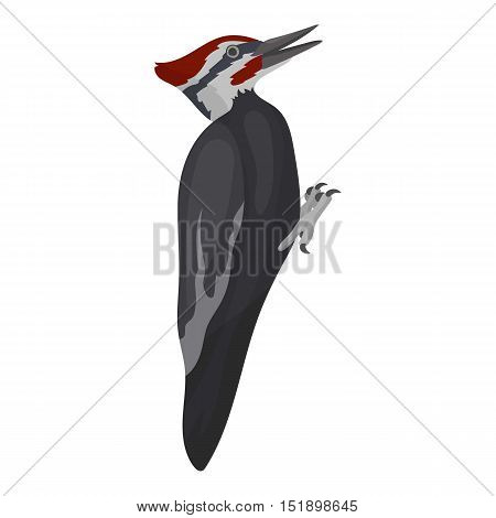 Woodpecker icon in cartoon style isolated on white background. Bird symbol vector illustration.
