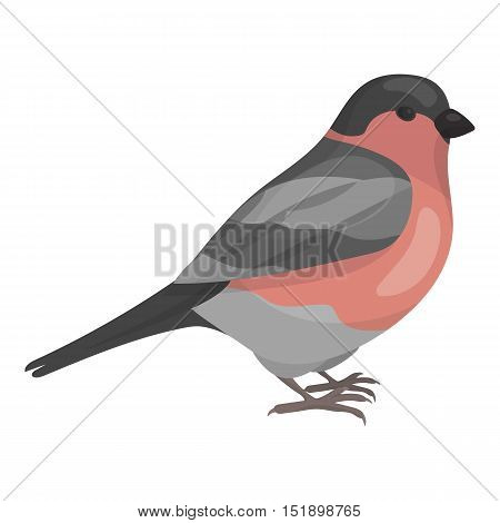 Bullfinch icon in cartoon style isolated on white background. Bird symbol vector illustration.