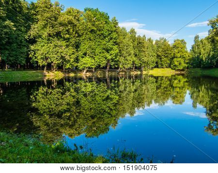 Forest pond at the summer in Russia